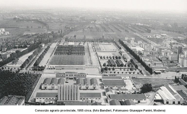 Consorzio agrario 1955