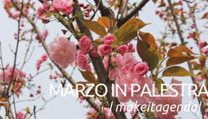 Cosa succede a MakeitModena a Marzo?