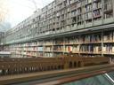 modello del Foro Boario esposto all'interno della biblioteca Poletti