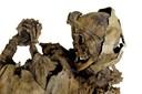 Mummia proveniente dalla Chiesa di Roccapelago, sec. XVIII (?).