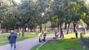 Volontari del verde al Parco delle Mura