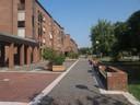 4 - quartiere Torrenova verde e percorsi piazza alta.jpg
