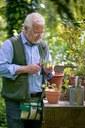 Il maestro giardiniere Carlo Pagani.jpg