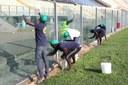 Richiedenti asilo volontari al Braglia