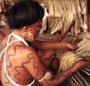 Yanomami  cesti.jpg