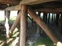 Particolare dei pali sottostanti la capanna della Terramara di Montale.jpg