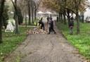 volontari curano area verde 3.jpg