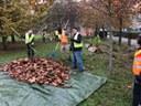 volontari curano area verde.jpg