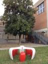 Interventi di riqualificazione giardini scolastici